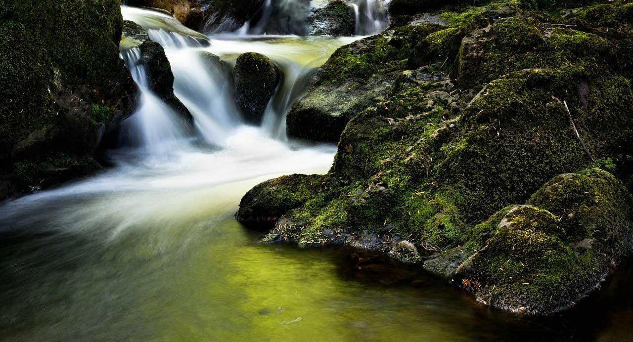 Riserva Naturale Orientata Bosco di Malabotta Torrente Licopeti