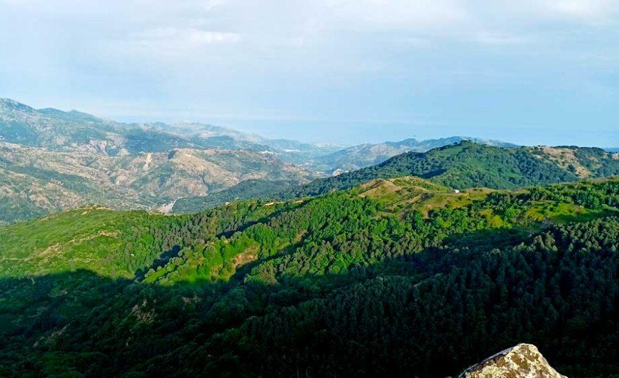 Riserva Naturale Orientata Bosco di Malabotta Sentiero Pittari